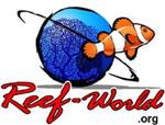 reef-worldorg
