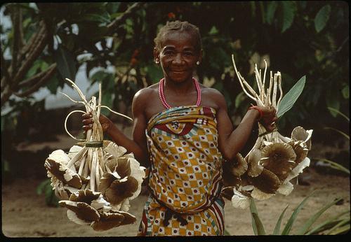 Indigenous Tribes in the Congo