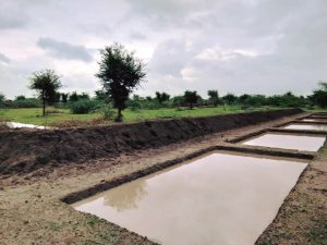 Chauka System Water Harvest