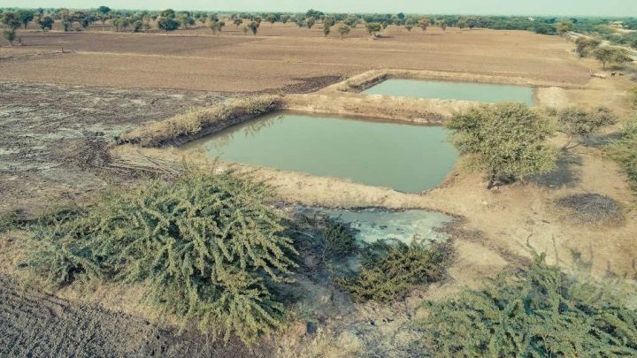 Using the Chauka System to Harvest Water in Rajasthan